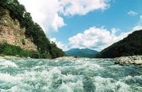 dederkoi river
