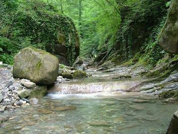 Каткова щель - удивительный уголок природы.